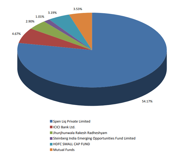 FSL share holding pattern Sept 2018